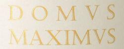 Domus-Maximus-Typo
